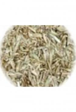 Grassamenmischung PREMIUM, 500 g