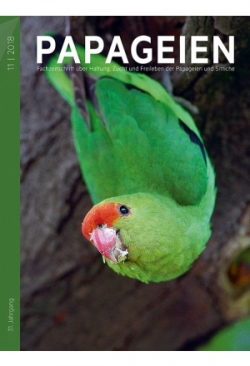 """""""Papageien"""", aktuelle Ausgabe (Einzelh.."""